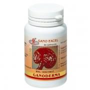 Gano Excel Ganoderma 90 capsule