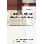 The Structural Approach to Direct Practice in Social Work by Gale Goldberg Wood