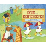 If You Were an Inch or a Centimeter by Marcie Aboff