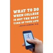 What to Do When College Is Not the Best Time of Your Life by David Leibow