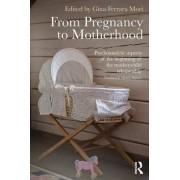 The From Pregnancy to Motherhood by Gina Ferrara Mori