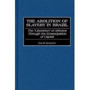 The Abolition of Slavery in Brazil by David Baranov
