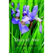 Days of Awe by Steven Schnur