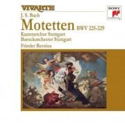 Frieder Bernius - Bach: Motets B W V 225-229 (0886976941529) (1 CD)
