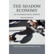 The Shadow Economy: An International Survey