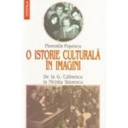 O istorie culturala in imagini. De la George Calinescu la Nichita Stanescu.