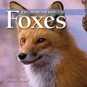Exploring the World of Foxes by Tracy Read
