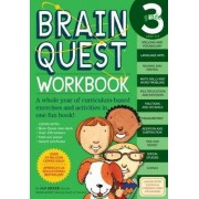 Brain Quest Grade 3 Workbook by Janet A Meyer