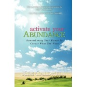 Activate Your Abundance Remembering Your Power to Create What You Want by Kim Caldwell