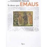 In drum spre Emaus - Constantin Necula