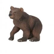 Grizzly Bear Cub Vanishing Wild