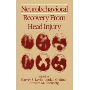 Neurobehavioral Recovery from Head Injury by Professor in the Departments of Physical Medicine and Rehabilitation Psychiatry Neurosurgery and Pediatrics Harvey S Levin