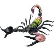 Deadly 60 3D Anatomical Model – Emperor Scorpion