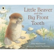 Little Beaver and the Big Front Tooth by Dr. Amy MacDonald