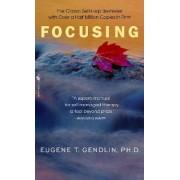 Focusing by Eugene T. Gendlin