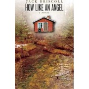 How Like an Angel by Jack Driscoll