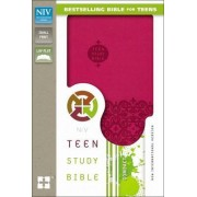 NIV, Teen Study Bible, Imitation Leather, Blue by Dr. Lawrence O. Richards