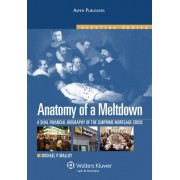 Anatomy of a Meltdown by Michael P Malloy