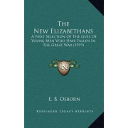 The New Elizabethans: A First Selection of the Lives of Young Men Who Have Fallen in the Great War (1919)