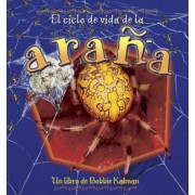 El Ciclo de Vida de La Arana by Bobbie Kalman