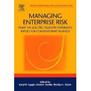 Managing Enterprise Risk: What the Electric Industry Experience Implies for Contemporary Business by Karyl B. Leggio