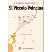 Il Piccolo Principe by Antoine de Saint-Exupery