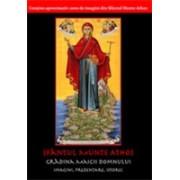 DVD Sfântul Munte Athos