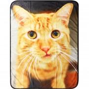 Animal Blanket Gato Dib 76X102