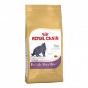 Royal Canin razas british shorthair 34 saco de 10 kg