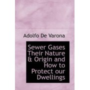 Sewer Gases Their Nature & Origin and How to Protect Our Dwellings by Adolfo De Varona