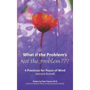 What If the Problem's Not the Problem by Jasmyne Boswell