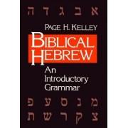 Biblical Hebrew: An Introductory Grammar