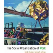 The Social Organization of Work by Professor of Sociology Randy Hodson