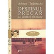 Destinul precar al idiilor literare. Despre instabilitatea valorilor în poetica lui Mihail Dragomirescu.
