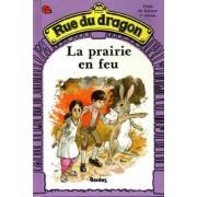 Rue Du Dragon (Puddle Lane) - Level 4: La Prairie En Feu