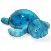 Tranquil Turtle Aqua CloudB