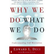 Why We Do What We Do by Edward L Deci PhD
