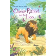 Clever Rabbit and the Lion by Mairi Mackinnon
