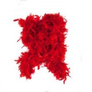 Red Feather Boa by Fun Express