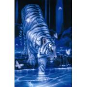 1000 piece White Tiger 11-196 (japan import)