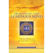 Awakening the Luminous Mind: Tibetan Meditation for Inner Peace and Joy by Tenzin Wangyal Rinpoche