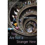 You Are Not A Stranger Here? by Adam Haslett