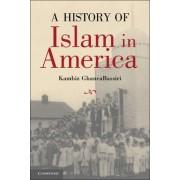 A History of Islam in America by Kambiz GhaneaBassiri