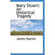 Mary Stuart by James Haynes