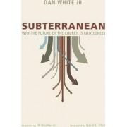 Subterranean by Dan Jr White