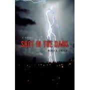 Shot in the Dark by Wendy K Lincoln