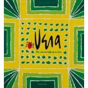 Vera by Susan Seid