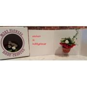 Ghiveci cu flori - miniatura