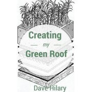 Creating My Green Roof by Dave Hilary