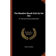 The Meadow-Brook Girls by the Sea: Or, the Loss of the Lonesome Bar